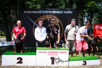 V2 on Dobermann South Winner Show